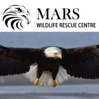 MARS Wildlife Rescue